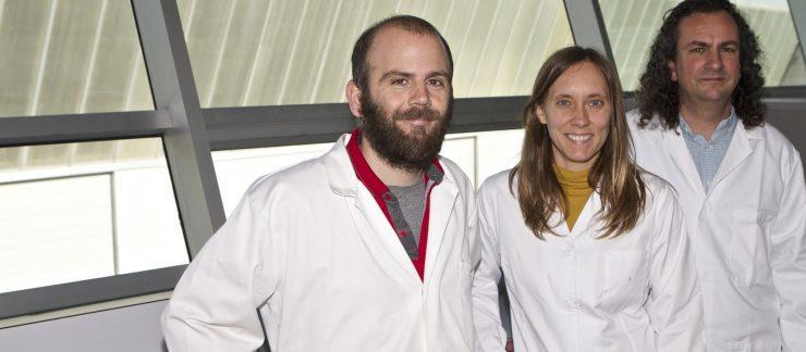Blanca Calderón, autora de la tesis, junto a los investigadores Ignacio Aracil y Andrés Fullana. Foto: Roberto Ruiz