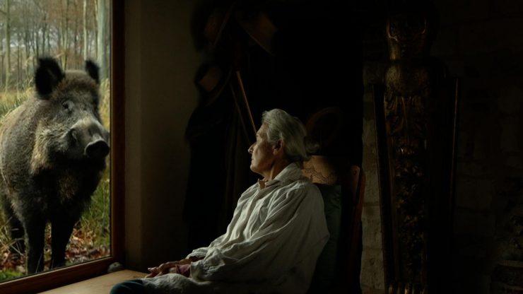 La película francesa 'Va, Totó' se estrenó en España a través de Fimec.