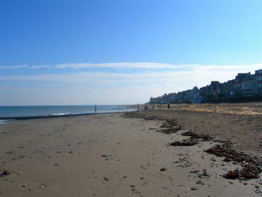 El papel de la posidonia es clave para frenar la regresión costera y adaptarse ante el cambio climático.