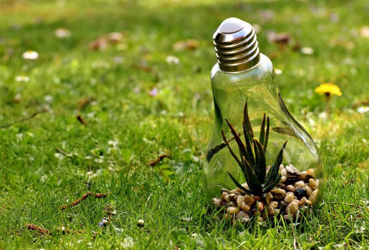 Una de las áreas que trabaja la RSC es la protección medioambiental.