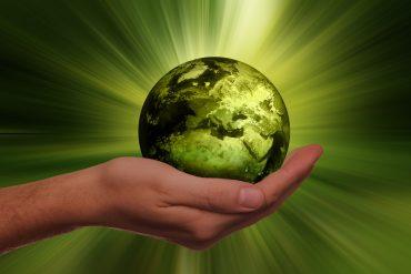 La protección del medio ambiente es una de las áreas que suelen trabajar en la RSC.