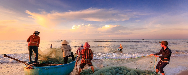 Los científicos plantearon varios escenarios sobre la pesca en los mares.