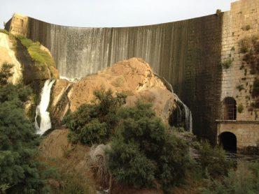 El Pantano de Elche es una de las áreas que el Ayuntamiento quiere mejorar.