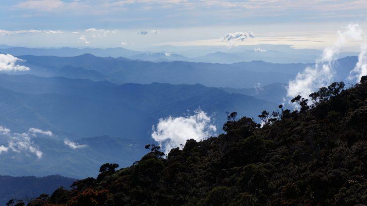 En Sonda, países como Borneo tienen problemas con las reservas naturales porque acaban generando endogamia en las especies.