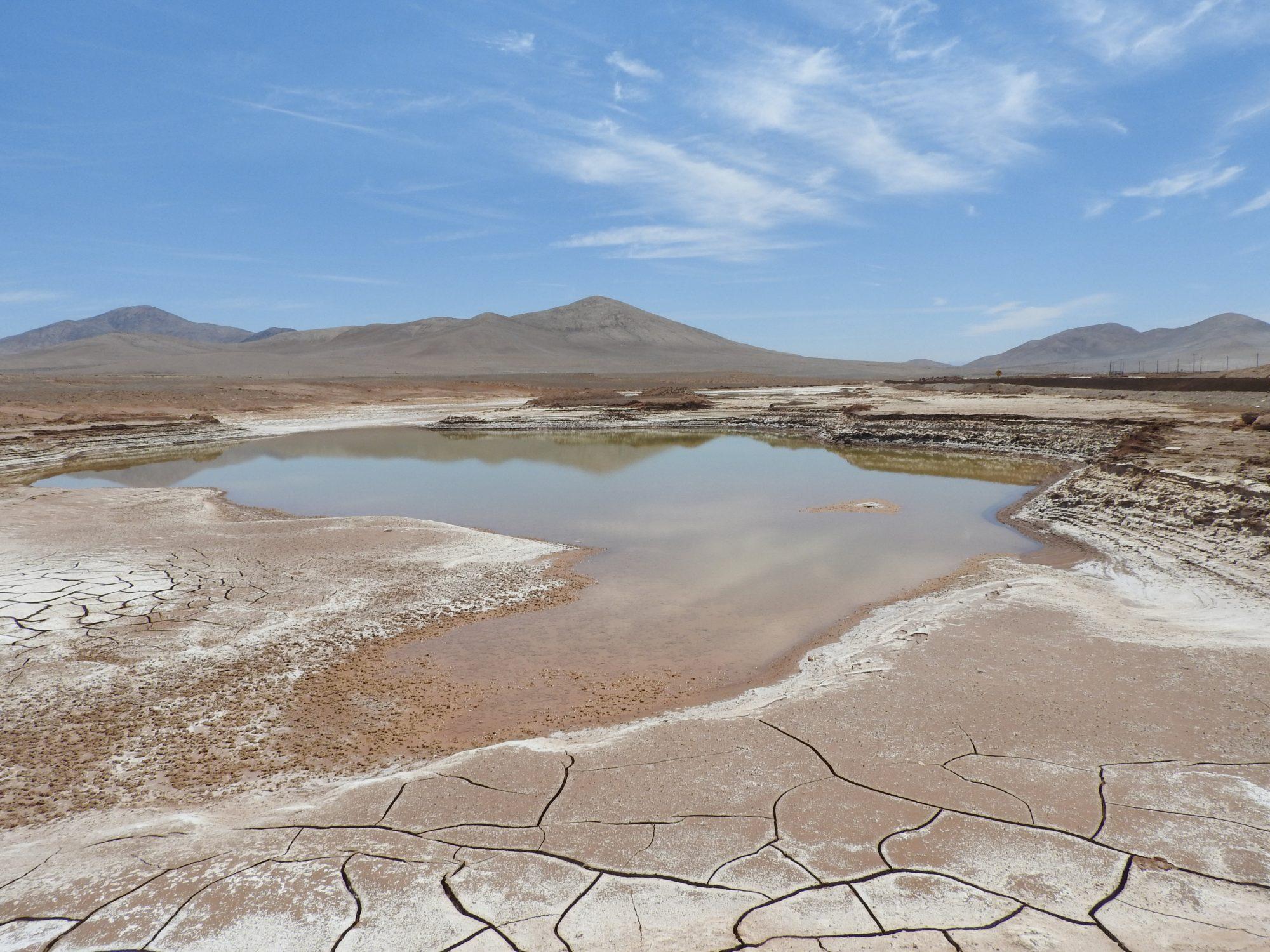 La lluvia en el desierto de Atacama. Carlos González Silva
