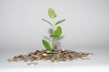 La sostenibiblidad en las empresas va asociada a la de la Tierra.