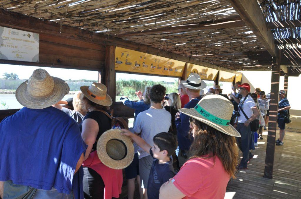 En El Hondo han enseñado a observar la fauna del parque