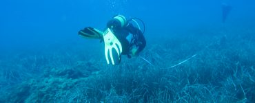 El Instituto de Ecología Litoral ha elaborado un proyecto para marcar cómo actuar en defensa de la costa.