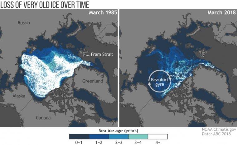 El declive del hielo del Ártico. El hielo de menos de un año de existencia es el más oscuro y el que tiene más de cuatro años es blanco.| NOAA
