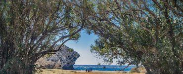 En Cabo de Gata y otras zonas de Andalucía están testeando el proyecto Life Adaptamed.