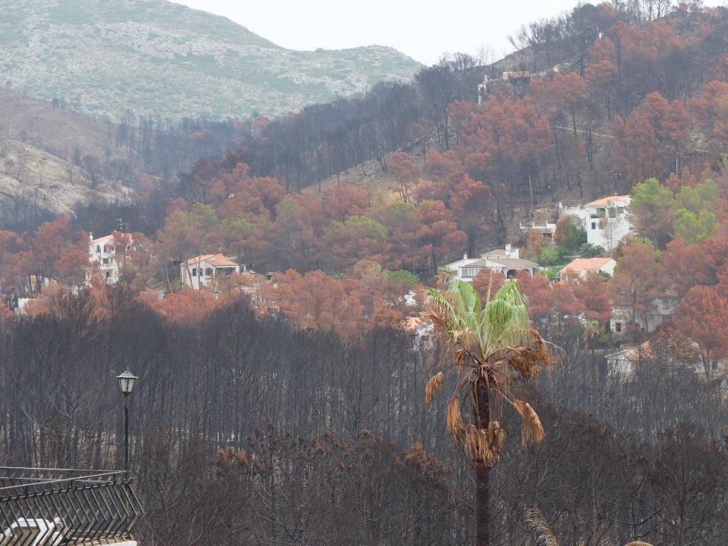 Casas afectadas en el término municipal de Gandía por el incendio forestal de Llutxent provocado por causas naturales (rayo) en 2018. Fuente: Medi XXI GSA