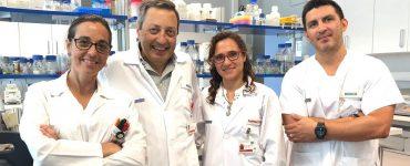 El proyecto Multicide investiga en biocidas que tengan una mayor duración de sus efectos contra virus y bacterias.