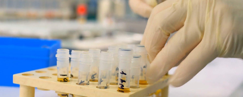 Un estudio de Débora Sorolla para el Doctorado Industrial en Microplásticos analiza este aumento del consumo de productos plásticos desechables.