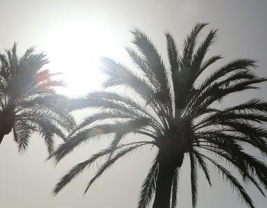 El primer informe anual sobre el estado del clima en España en 2019 destaca que el incremento de temperatura es de 0.3ºC por década desde los años 60.