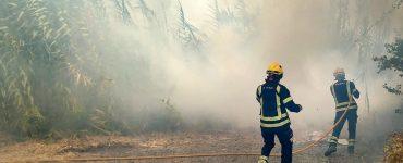 Los medio humanos y técnicos del Consorcio Provincial de Bomberos de la provincia de Alicante luchan sin descanso contra el fuego.