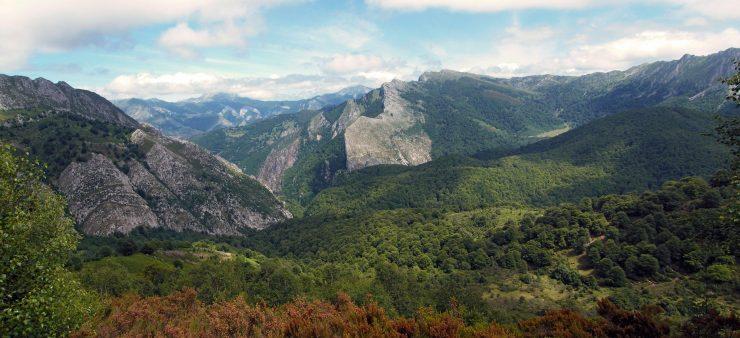 El estudio del CSIC señala los problemas de paisajes como los bosques jóvenes y homogéneos como menos resistentes a los incendios