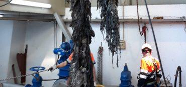 Basta de diminutivos es la campaña que lanza Aguas de Alicante para denunciar el coste de la limpieza a causa de su mal uso