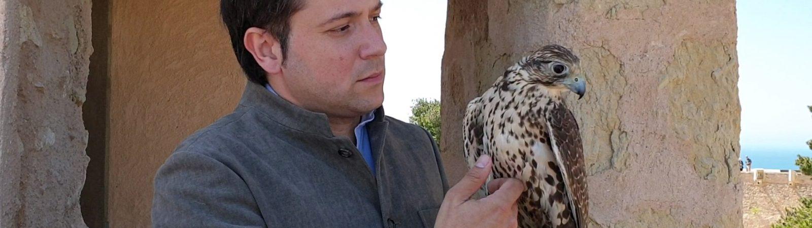 El Mudic organiza en Orihuela un encuentro entre Odile Rodríguez y David Santacreu para analizar el trato a las aves de presa y la cetrería
