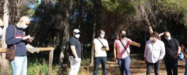 Un experimento del grupo ReForeST de la UPV en La Vallesa estudia patrones de riego automatizados como prevención y defensa ante incendios.