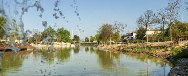 La Cañada Marsa en Benijófar es un ejemplo del desarrollo de soluciones basadas en la naturaleza que representa una de las mayores inversiones del grupo Suez e Hidraqua en la Comunitat Valenciana.