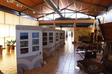 La exposición #PhotoClot, con más de 200 imágenes sobre el Clot de Galvany, se podrá contemplar en el Museo del Pusol hasta el 23 de junio.