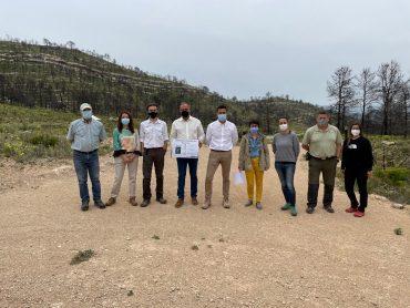 Sembrando Oxígeno plantará quince mil metros cuadrados de árboles en Beneixama