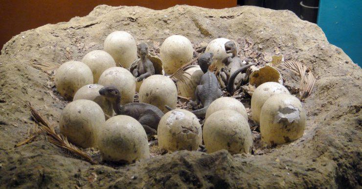 Los restos hallados en el Ártico apoyan la idea de dinosaurios de sangre caliente.