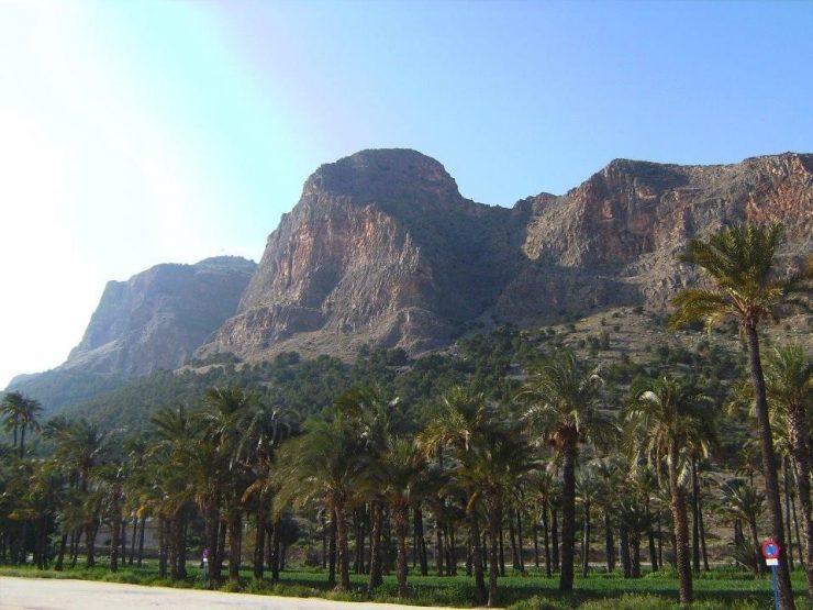 El palmeral, a los pies del monte de san Miguel es una de las últimas actuaciones de la Edusi que gestiona Orihuela.