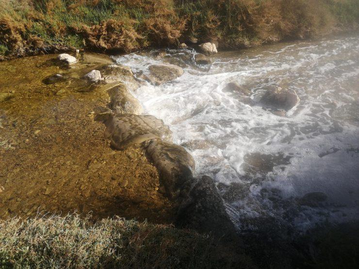 José Navarro Pedreño afirma que los humedales ofrecen la cuarta parte de los servicios ecosistémicos ambientales del planeta.