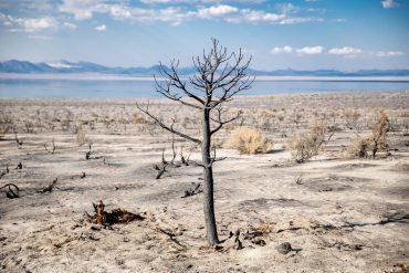 El atlas de catástrofes climáticas refleja la tendencia al alza de estos fenómenos. Foto: Nikolay Maslov